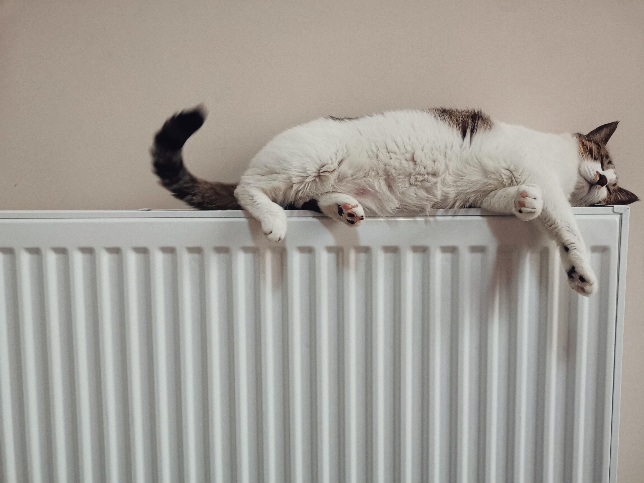 warm home discount brighton hove